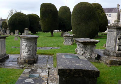 A random collection or a formal avenue of yews in Painswick, Gloucestershire