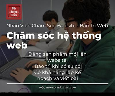 Nhân viên chăm sóc website