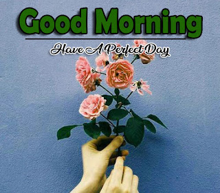 New Good Morning 4k Full HD Images Download For Daily%2B4