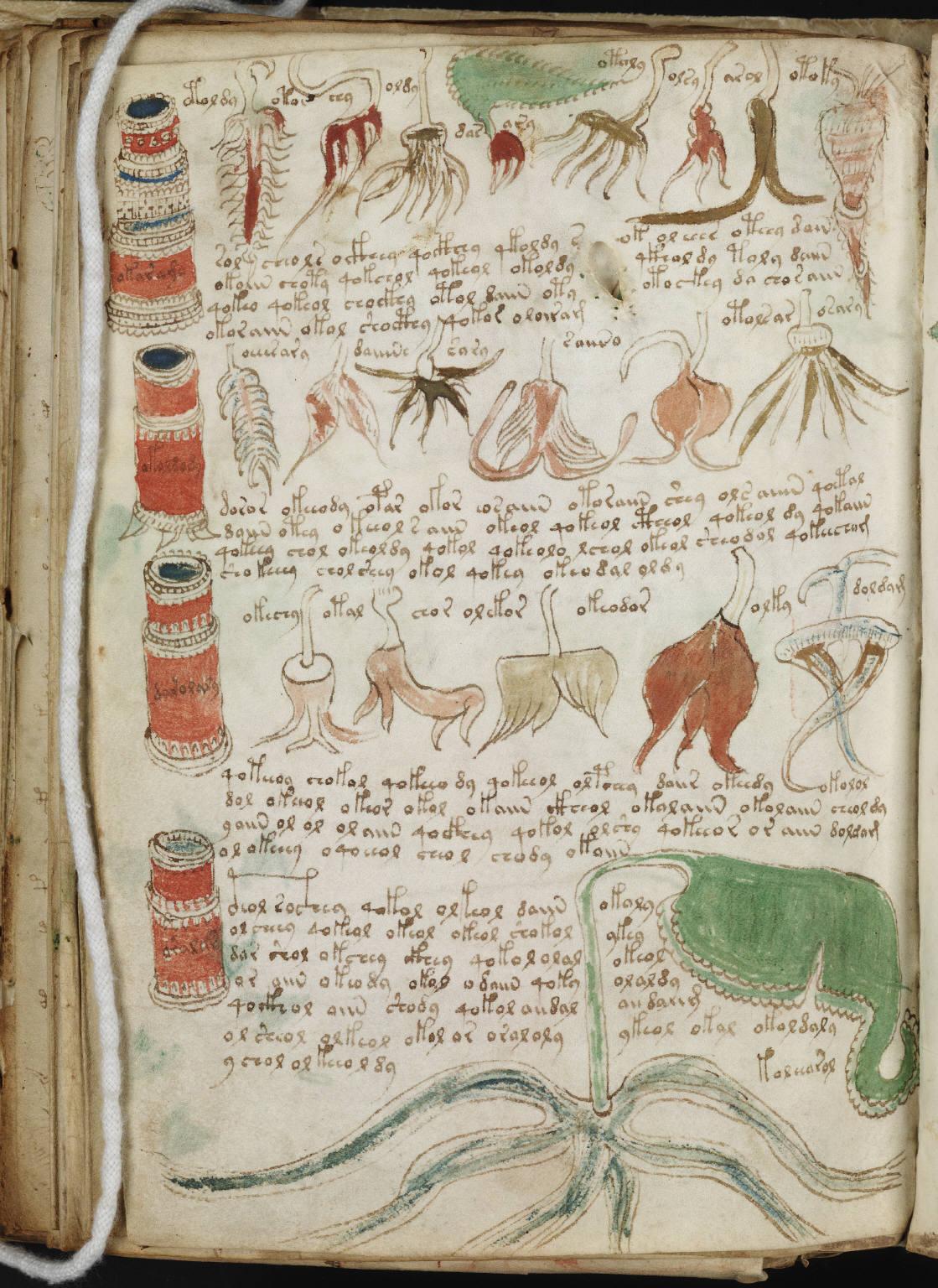 manuscrito215