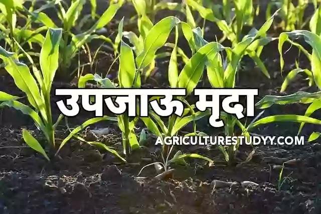 उपजाऊ मृदा (Fertile Soil Meaning in hindi)