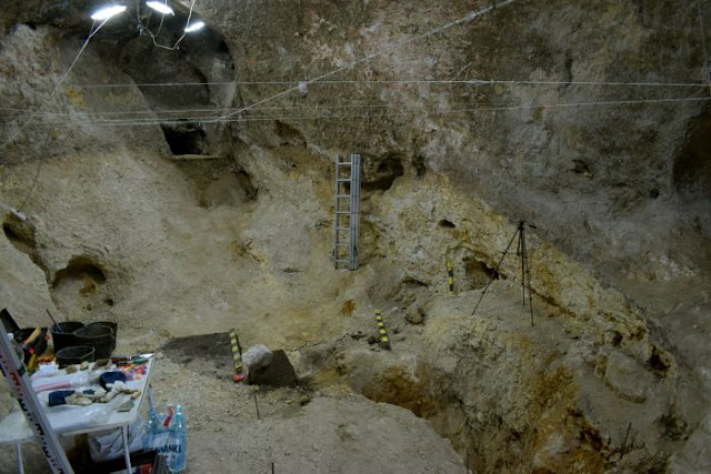 Neanderthal stone tools found in Polish castle cave