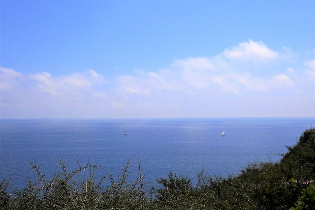 Il mare Adriatico dall'alto del Sentiero delle Cipolliane