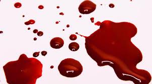 Apakah darah termasuk najis ataukah bukan?