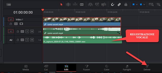 registrazione vocale aggiunta traccia scheda edit