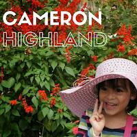 http://babynadra.blogspot.my/2012/04/5th-birthday-cameron-highlands.html