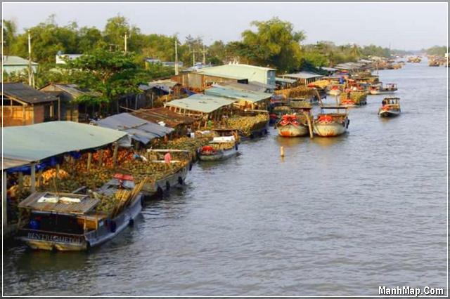 Dừa được bán rất nhiều trên sông