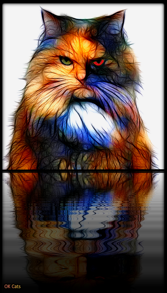 Photoshopped Cat picture • Fractalized cat is angry. Don't mess with him, he's a killer! [ok-cats.com]