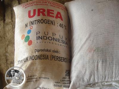Pupuk Urea atau Pupuk Kimia