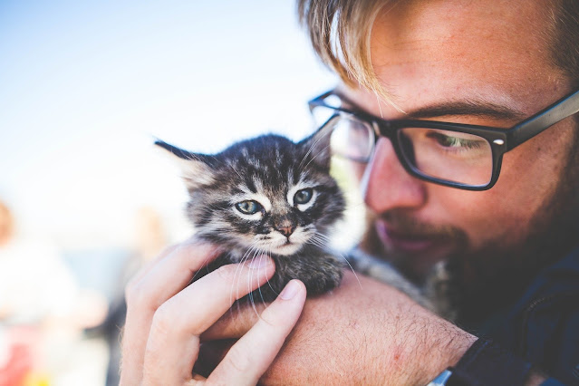 Man with domestic cat companion
