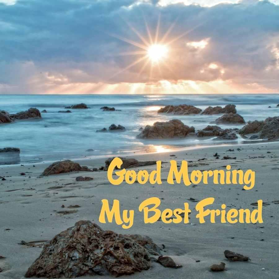 good morning lovely friends