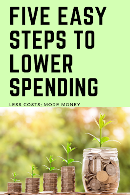 budgeting in 2019, lowering costs in 2019, spending less in 2019, cut your costs in 2019, decrease spending in 2019, spending analysis