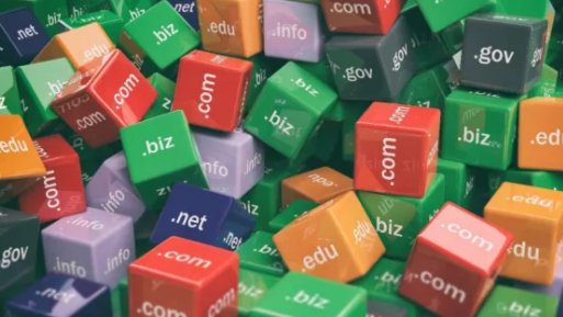 How To Search Domain Name