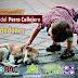 Σήμερα είναι η Παγκόσμια Ημέρα Αδέσποτου Σκύλου