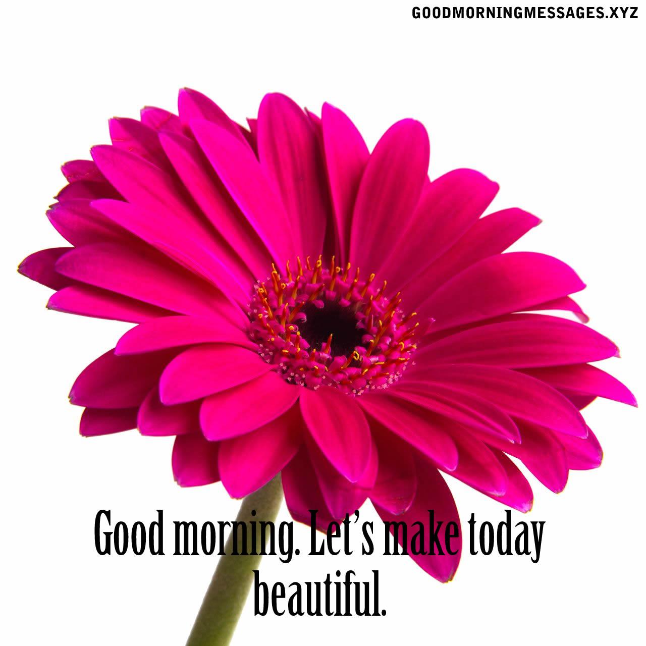 Good morning Lets make today beautiful