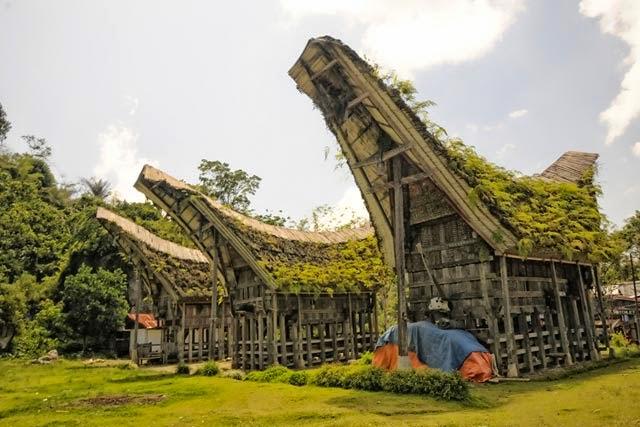 Orang Toraja dan Makna Tongkonan  Toraja Tourism