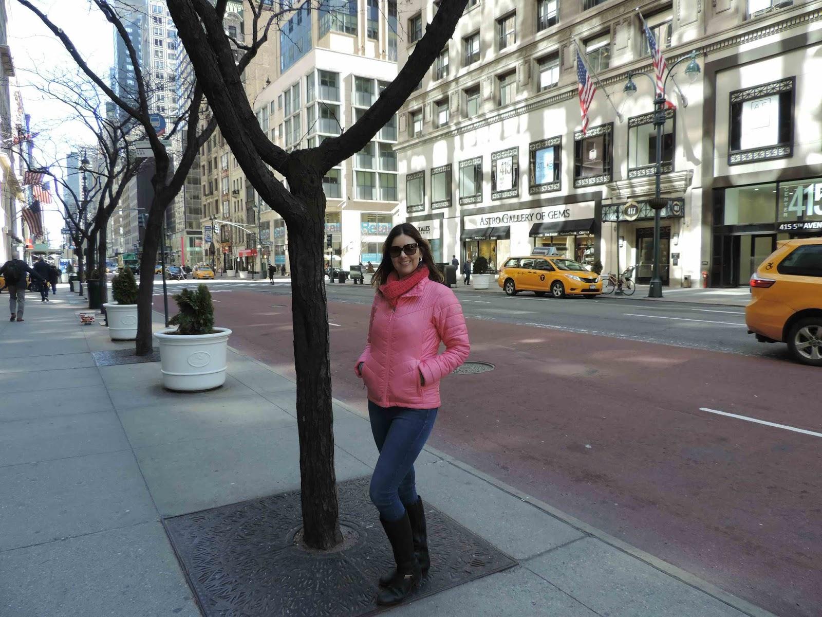 Roteiro completo de 6 dias de viagem em New York com crianças