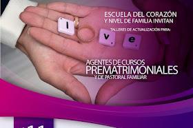 Agentes de cursos prematrimoniales y de Pastoral Familiar.