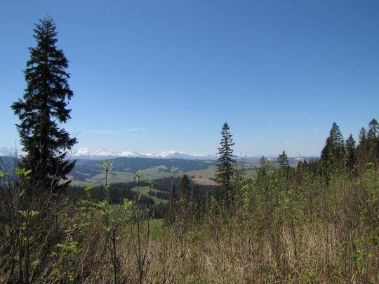 Panorama w kierunku południowo-zachodnim