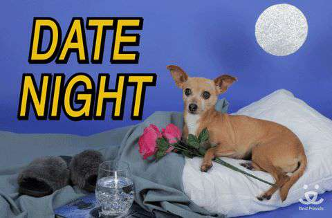 Doggy Date Night Wishes Images