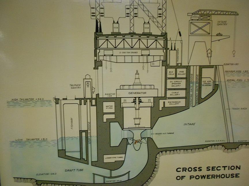 bonneville dam western trips anderson fish ladder electric turbine diagram