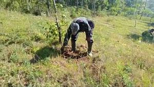 Dansektor 03, Kolonel Hudiono Selamatkan Lahan Kritis Dengan Pemeliharaan Pohon Keras