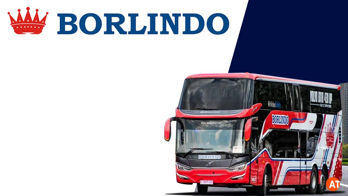 Bus Borlindo