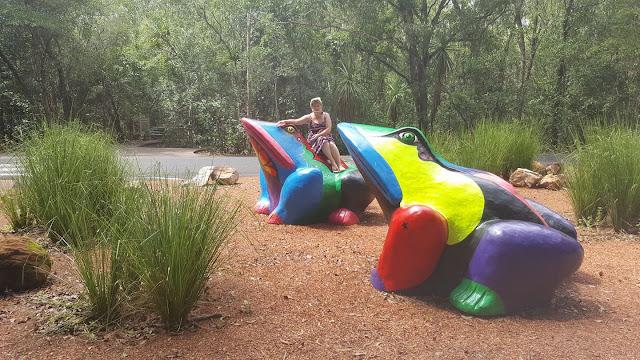 Berry Springs | BIG Frogs