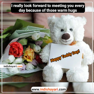 Happy Teddy Day whishes greetings sms quotes images for whatsapp Facebook Instagram status