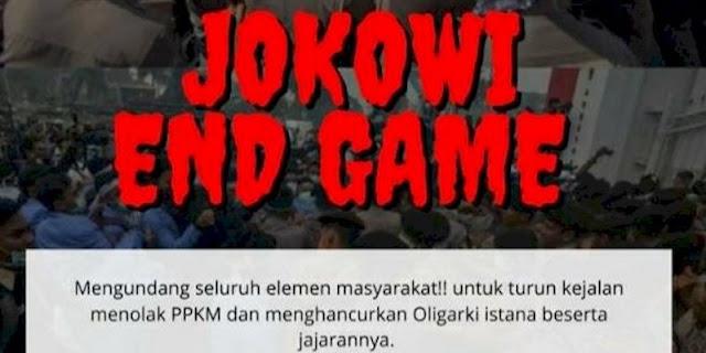 Joman Tuding Seruan Aksi Jokowi End Game Ditunggangi Elite Provokator