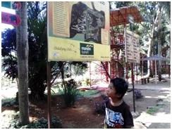 seorang-anak-melihat-peta-kebun-binatang-medan-yang-luasnya-sekitar-30-hektar.