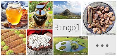 Bingöl'ün meşhur şeylerini gösteren resimlerden oluşan kolaj