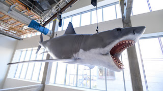 JAWS - The Academy Museum of Motion Pictures completed the installation of one of the most iconic objects from the classic film!