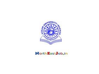 Assam-University-Jobs-December-2019