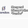 Mengenal Library Python Pandas dan Contoh Penggunaannya