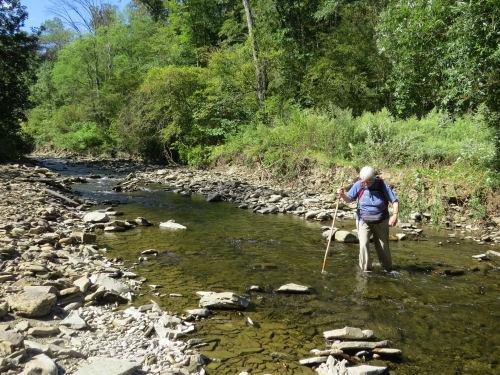 wading Goodhue Creek