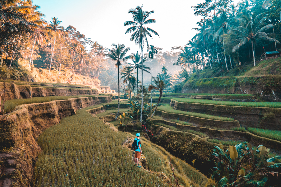 Bali - The World's Best Known Paradise on Earth