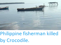 https://sciencythoughts.blogspot.com/2019/10/philippine-fisherman-killed-by-crocodile.html