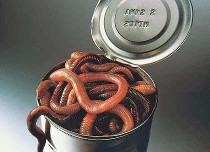 lt can of worms art 420x0 Causa ed effetto in economia: Come verrà staccata la spina