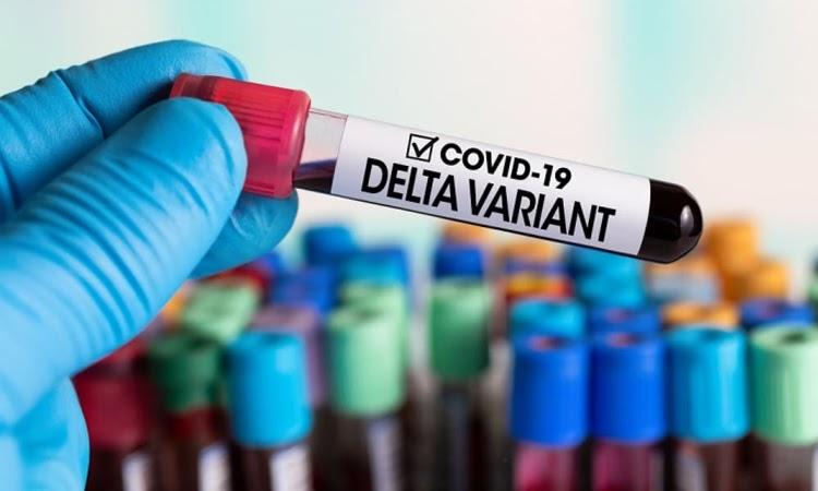 Bahia detecta mais 58 casos da variante Delta; confira as cidades