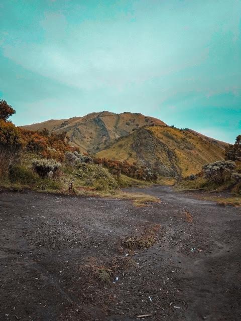 Savana gunung merbabu via selo boyolali