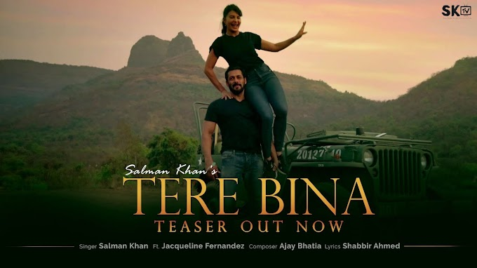 Tere Bina Lyrics in English by Salman Khan and Jacqueline Fernandez