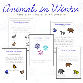 Over and Under the Snow book review with lots of follow-up activities!