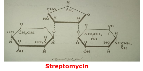 Streptomycin antibiotics