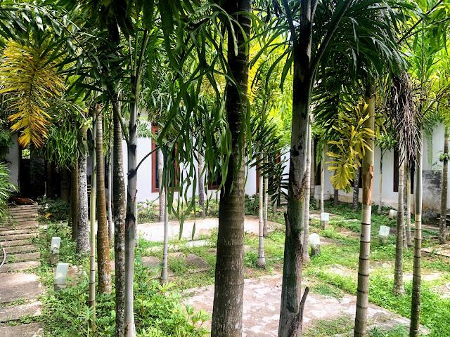 สวนหมาก บ้านเดอนารา ปัตตานี