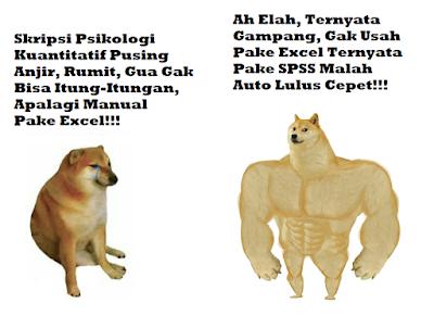 Meme penggambaran skripsi psikologi kuantitatif