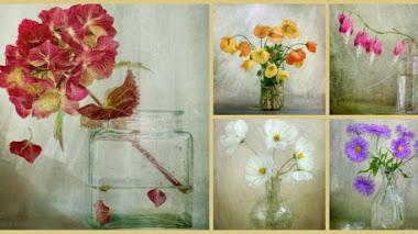 La belleza de las flores con Mandy Disher