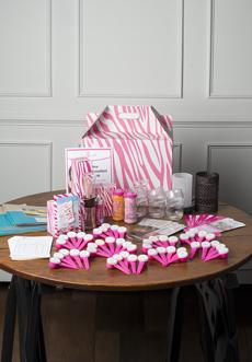 Pink Zebra Starter Kit