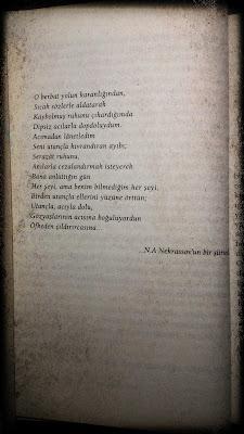 Nekrassov Şiir Öfke