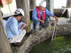 Dịch vụ cho thuê máy thủy bình điện tử nhanh nhất